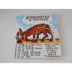 BURROMETRO DE INTERPERIE 20X20